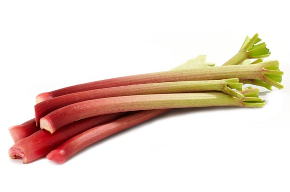la-rhubarbe