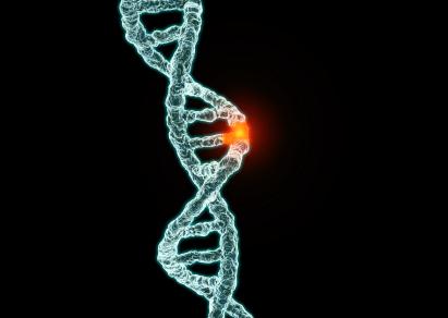 gene-mutation schema