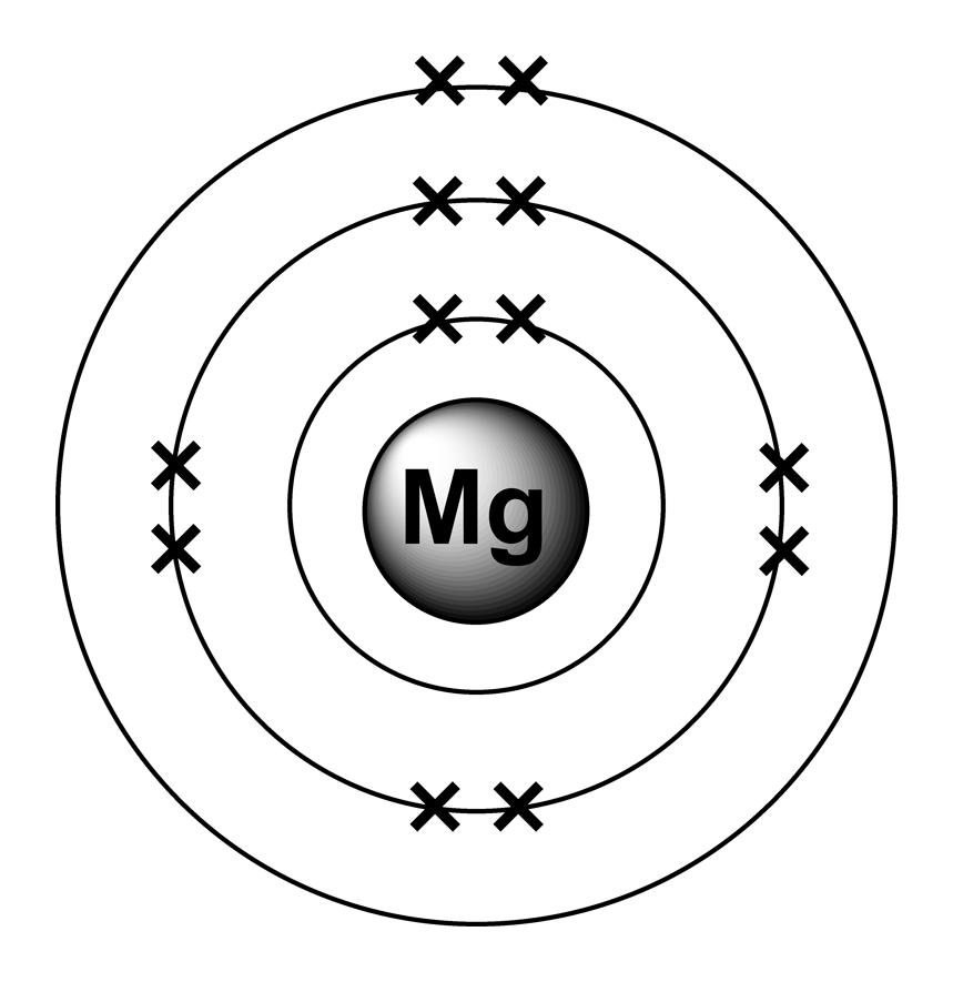 Magnesium schéma