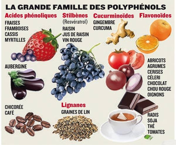 tableau-polyphenols
