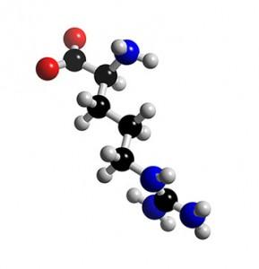 L-arginine-molecule